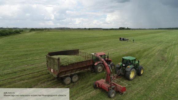 Эксперт объяснил, какую пользу извлечет российский АПК от переезда южноафриканских буров в Россию