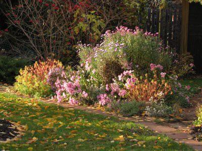 Составлен календарь работ в цветнике на октябрь
