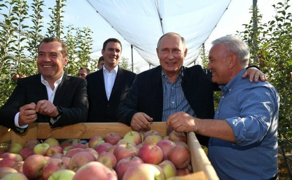 Путин раскрыл секрет своей работоспособности