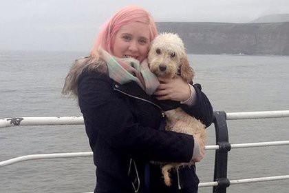 Истосковавшегося после смерти подруги пса отправят к собачьему терапевту