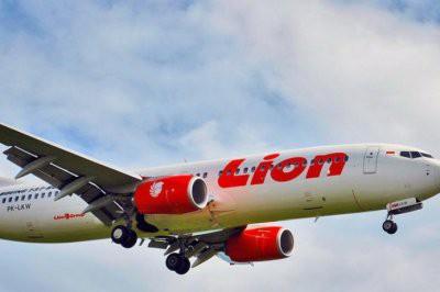 О проблеме на борту упавшего в Индонезии Boeing 737 сообщили накануне
