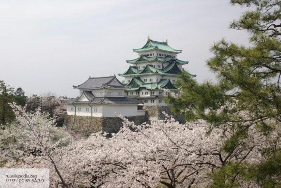 Японская принцесса вышла замуж за служащего и лишилась титула