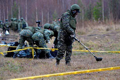 Полицейские заложили взрывчатку в Калининграде и пошли под суд