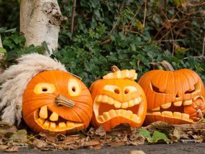 Роскачество подготовило рекомендации по выбору тыквы на Хэллоуин