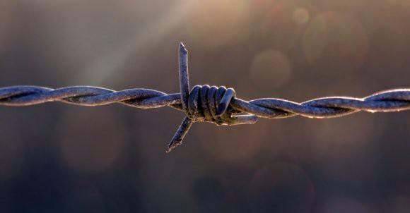 Эксперт: предложенное Путину правило содержания террористов в тюрьмах укрепит безопасность РФ