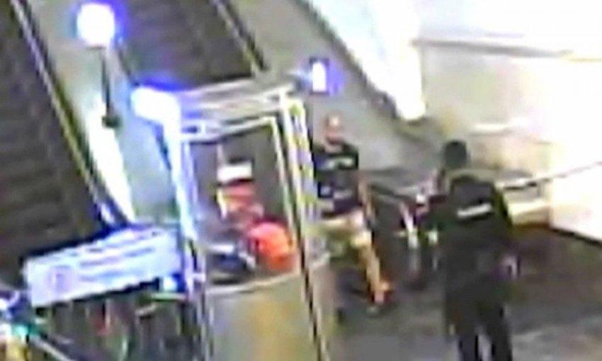 Пингвины в метро привиделись пьяному москвичу