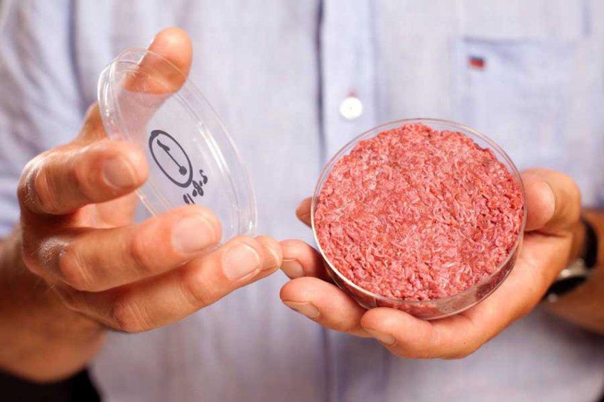 """Космонавты будут выращивать мясной """"фарш"""" при помощи биопринтера"""