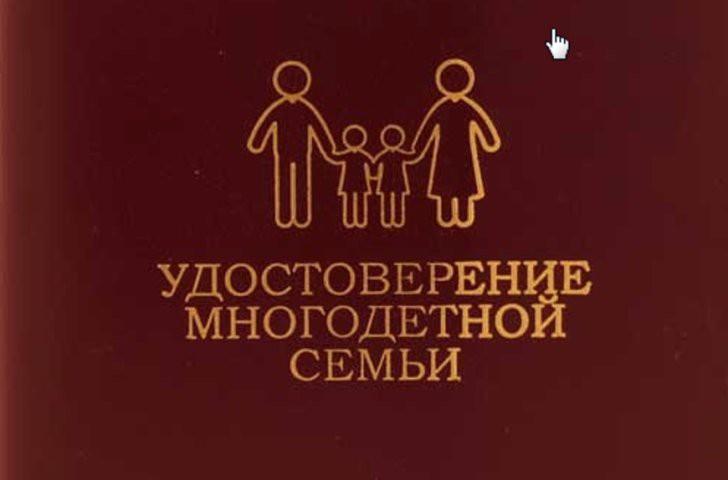 Удостоверение многодетной семьи — как получить 2018: законопроект о статусе многодетной семьи в 2018 году