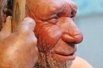 Учёные: Неандертальцы «наградили» человека вирусом ВПЧ