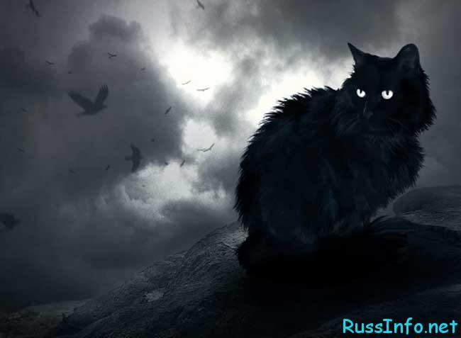 Предсказания ведьмы Ольги на 2019 год для России