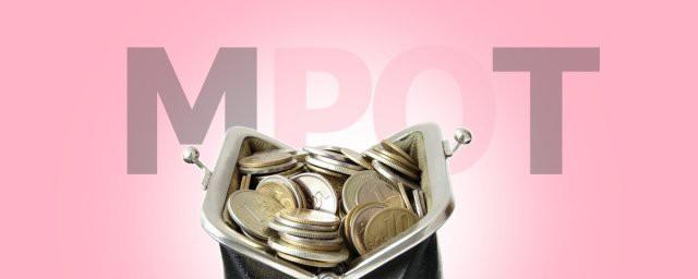 МРОТ с 2019 в России увеличится на 117 рублей
