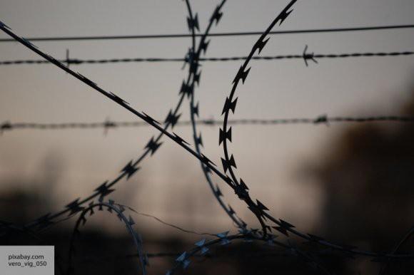 ФСИН планирует запретить мобильную связь в колониях