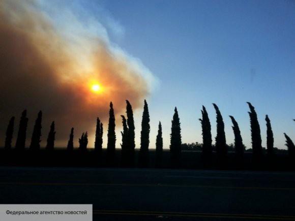 Количество жертв пожара в Калифорнии возросло до 9