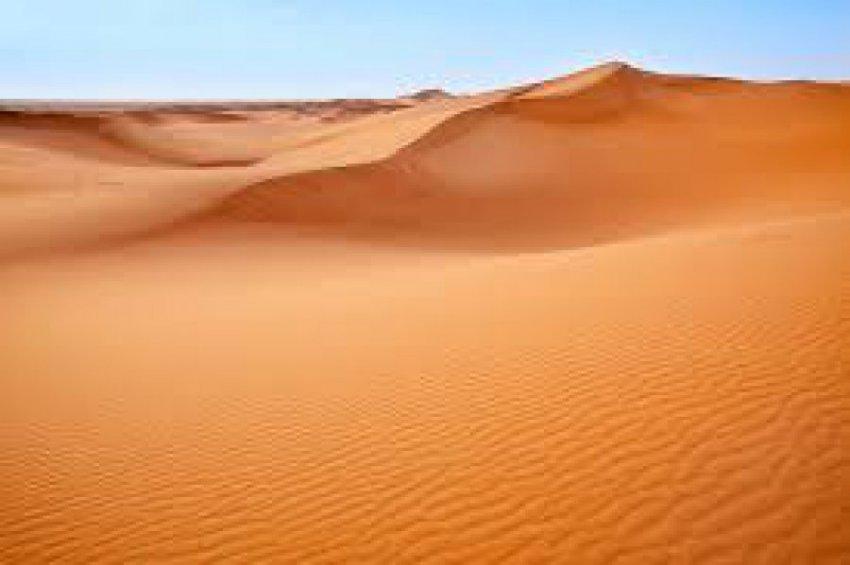 Ученые из США нашли способ сделать Сахару зеленой и плодородной