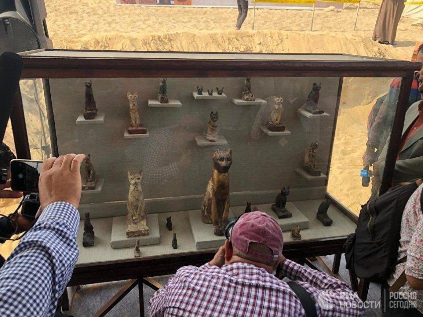 В Египте нашли гробницы с мумифицированными животными | Свежие новости