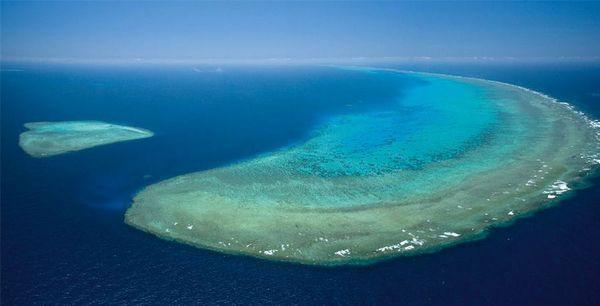 Окунитесь в красоту большого барьерного рифа