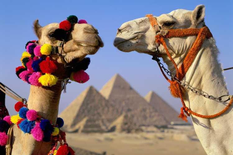 Когда откроют Египет для туристов 2018 новости сегодня 14 декабря