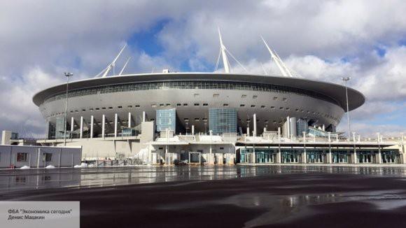 Выдуманные бакланы: власти Петербурга развеяли миф о стадионе