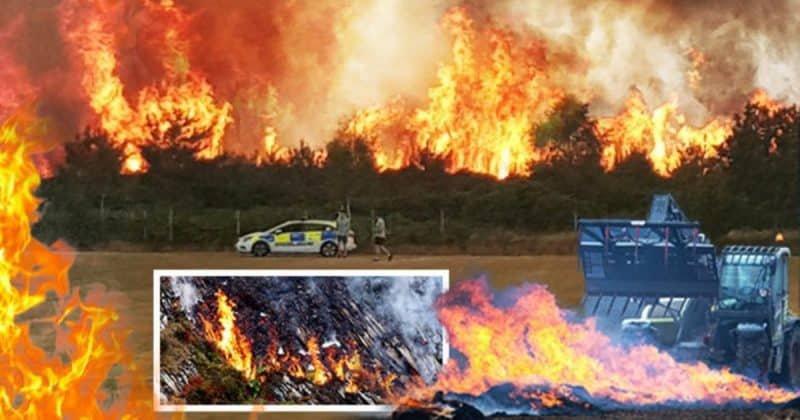 Один из крупнейших зоопарков Великобритании охватил пожар