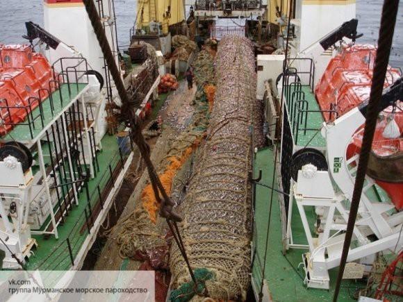 Японская газета отметила развитие рыбной отрасли в России