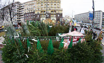 Елочные базары в Москве будут открыты с 20 по 31 декабря