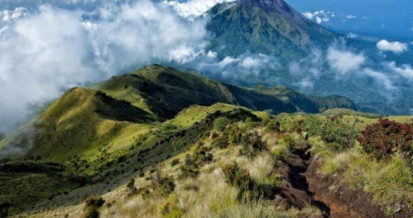 Археологи обнаружили в холме на острове Ява древнейшую пирамиду