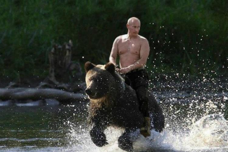 Календарь с Путиным стал самым продаваемым в Японии