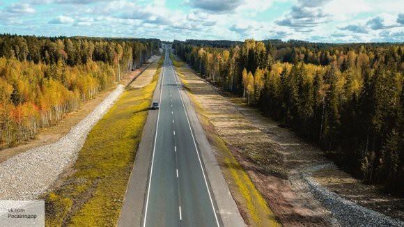 Новая шумовая разметка появится на дорогах России в 2019 году