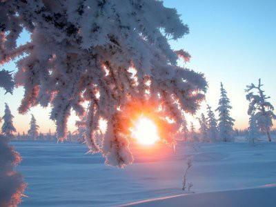 Сегодня начинается день зимнего солнцестояния