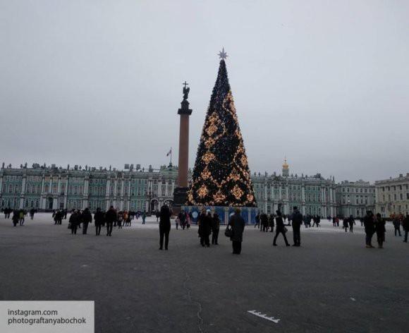 Опрос: 4% жителей России хранят новогоднюю елку до лета