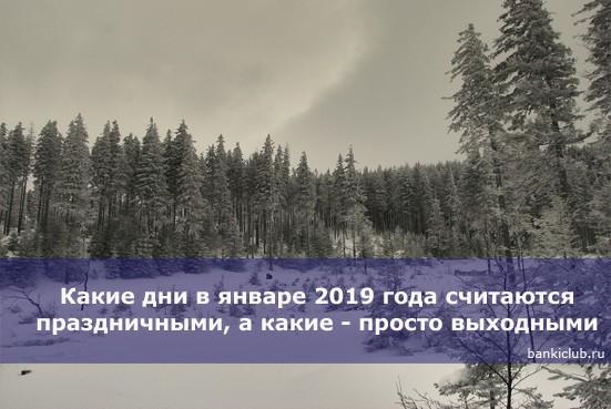 Какие дни в январе 2019 года считаются праздничными, а какие — просто выходными