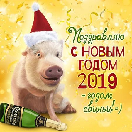 Официальные поздравления с Новым годом 2019 коллегам: в прозе, с приколами