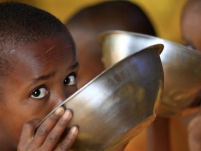 Аналитики предрекают голодный год