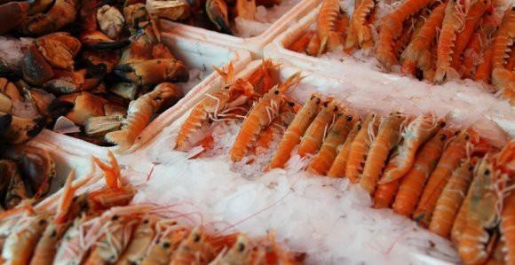 «Даже креветки выживают в суровых российских условиях»: эксперт рассказал про ответ России на «белорусские морепродукты»