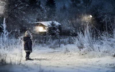 В Хабаровском крае трехлетний ребенок самостоятельно выбрался из тайги