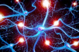 Гибель нейронов при болезни Альцгеймера оказалась защитным механизмом