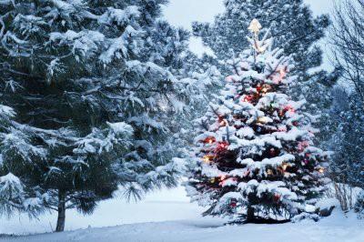 Синоптики рассказали, какой будет погода в новогоднюю ночь 2019 в России