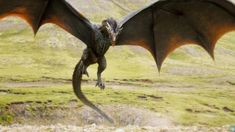 Сериал Игра престолов: кто такие виверны, какая разница между драконом и виверной