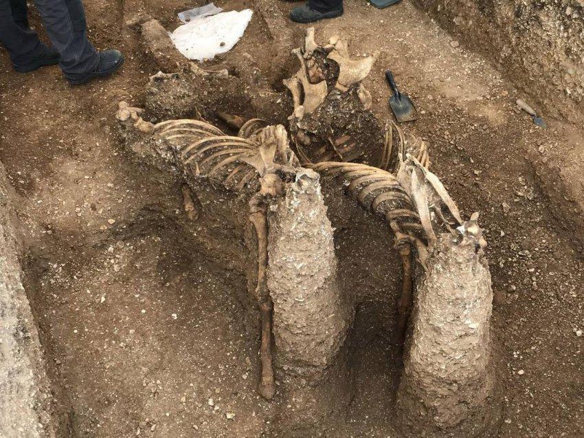 """В могиле железного века нашли """"вампира"""", пронзенного 9 копьями"""