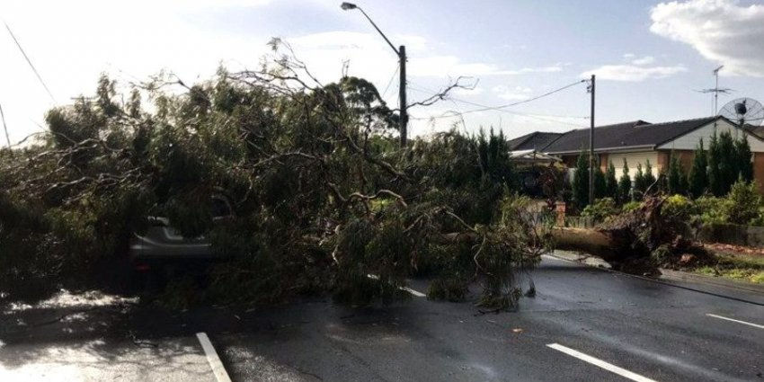 Ураган обрушился на восточное побережье Австралии