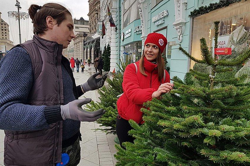 Сколько стоит живая ёлка в Москве 2018 - адреса базаров