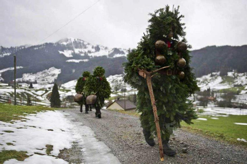 Стало известно, у скольких россиян новогодняя ёлка стоит до лета