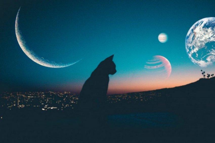 Какая сегодня 22.12.2018 фаза Луны - растет или убывает, лунный календарь