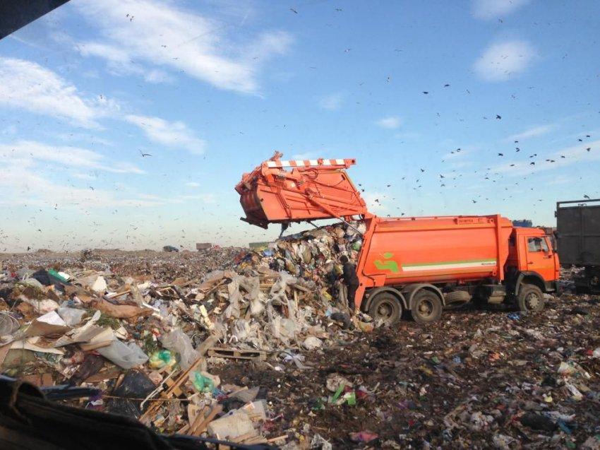 Повышение платы за мусор: закон о ТБО с 1 января 2019 года