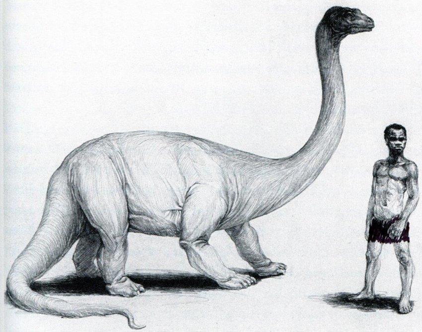 Вероятные наблюдения живых динозавров в Индонезии и Папуа-Новая Гвинея