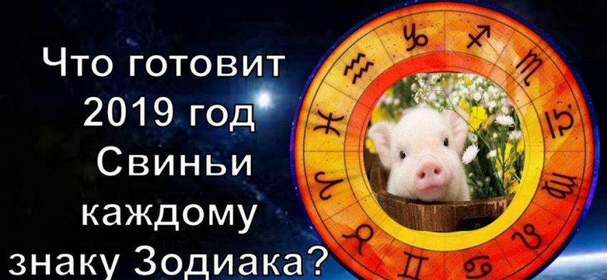 Прогноз на 2019 год: для всех знаков зодиака гороскоп 2019, самые удачливые знаки зодиака в год Свиньи
