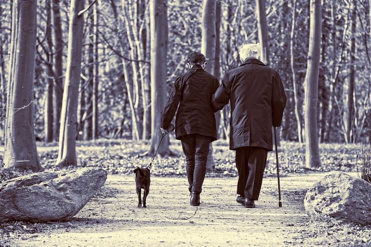 Предпенсионеры могут рассчитывать на обязательную долю наследства