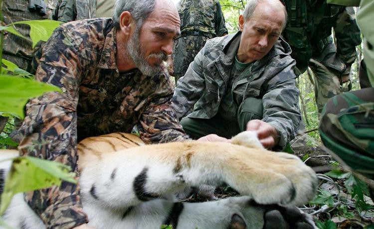 Путин подписал новый закон о животных