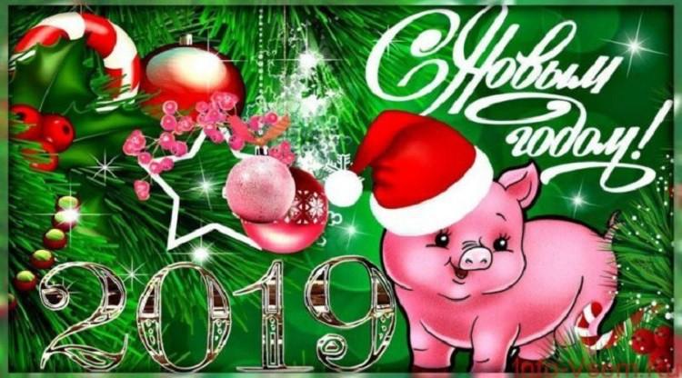 Новый год по Китайскому календарю 2019 - когда наступает год Свиньи