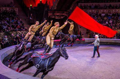 Депутат Заксобрания Ленинградской области предложил запретить детям посещать цирки